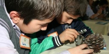 Çocuklar Ağaçlarla İstanbul'u Tanımaya Başladı