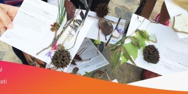 Sosyal Bağış Hareketi Ocak ayında ÇEKÜL Bilgi Ağacı ile başlıyor!