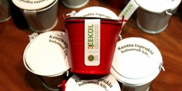 Aromatik yerel bitki tohumları kovalarımız hazır!