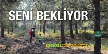 92 Ormanı Seni Bekliyor