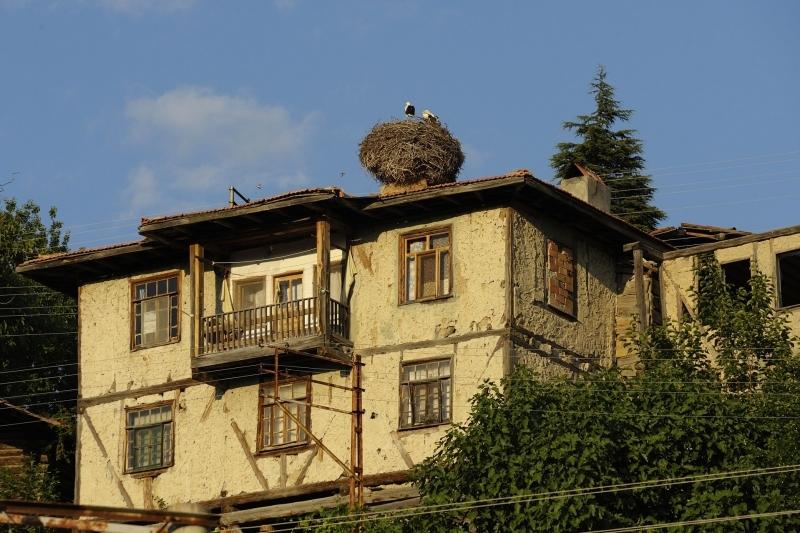 Bağı Bahçesi, Hanı Hamamıyla Tosya