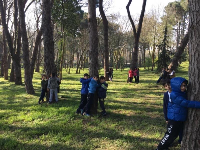 ÇEKÜL Bilgi Ağacı Öğretmen Programlarına Başvurular Başladı