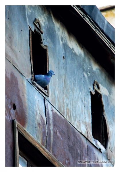Anadolu Kartpostalları: Van'dan Birgi'ye...