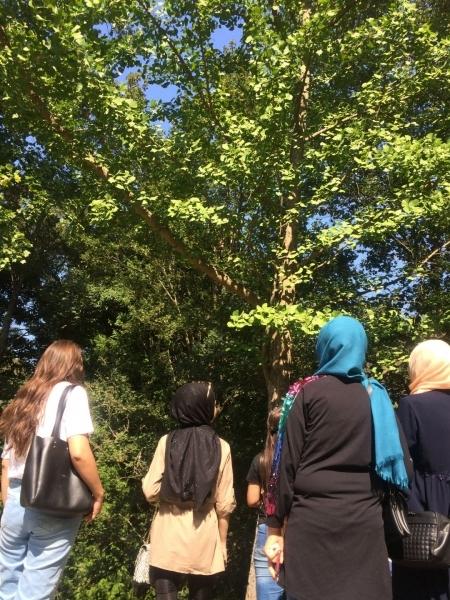 GAP Bölgesi Öğrencileri ile İstanbul Buluşması