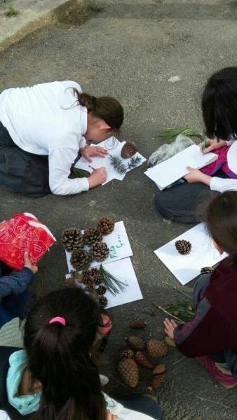 Çocuklar ağaçların dilinden konuştu