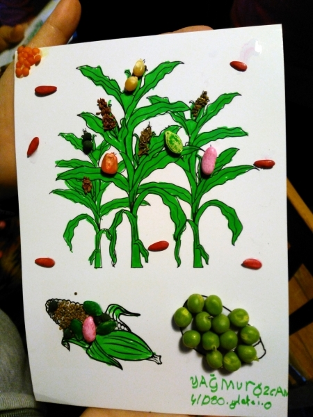 276 öğrenci yerel tohumlarla tanıştı
