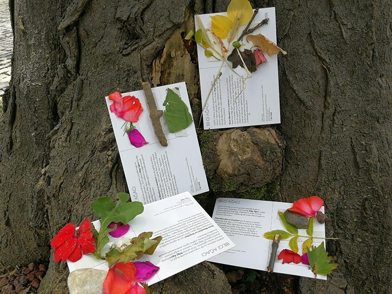 Öğretmenimiz Doğa, Dersimiz Yaşam