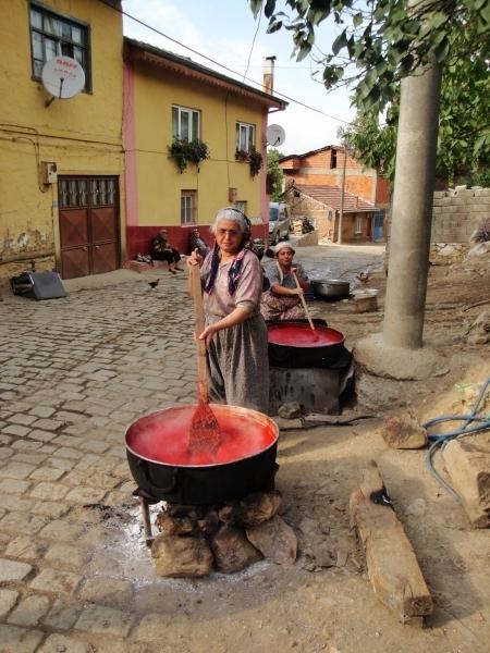 Köyler Yaşamalıdır programına ödül!